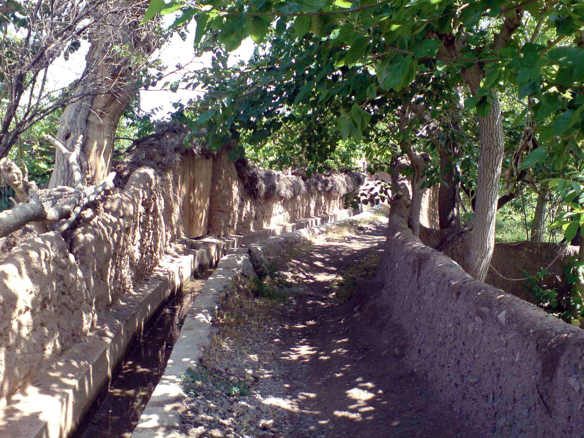 روستای روچی